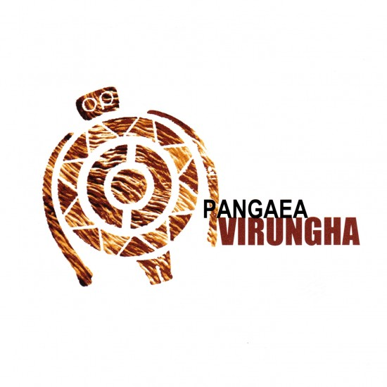 Virungha cover